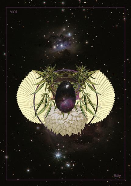 egg cannabis por @BuiaFronza
