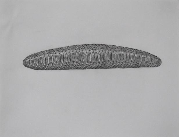 Caterpillar #3