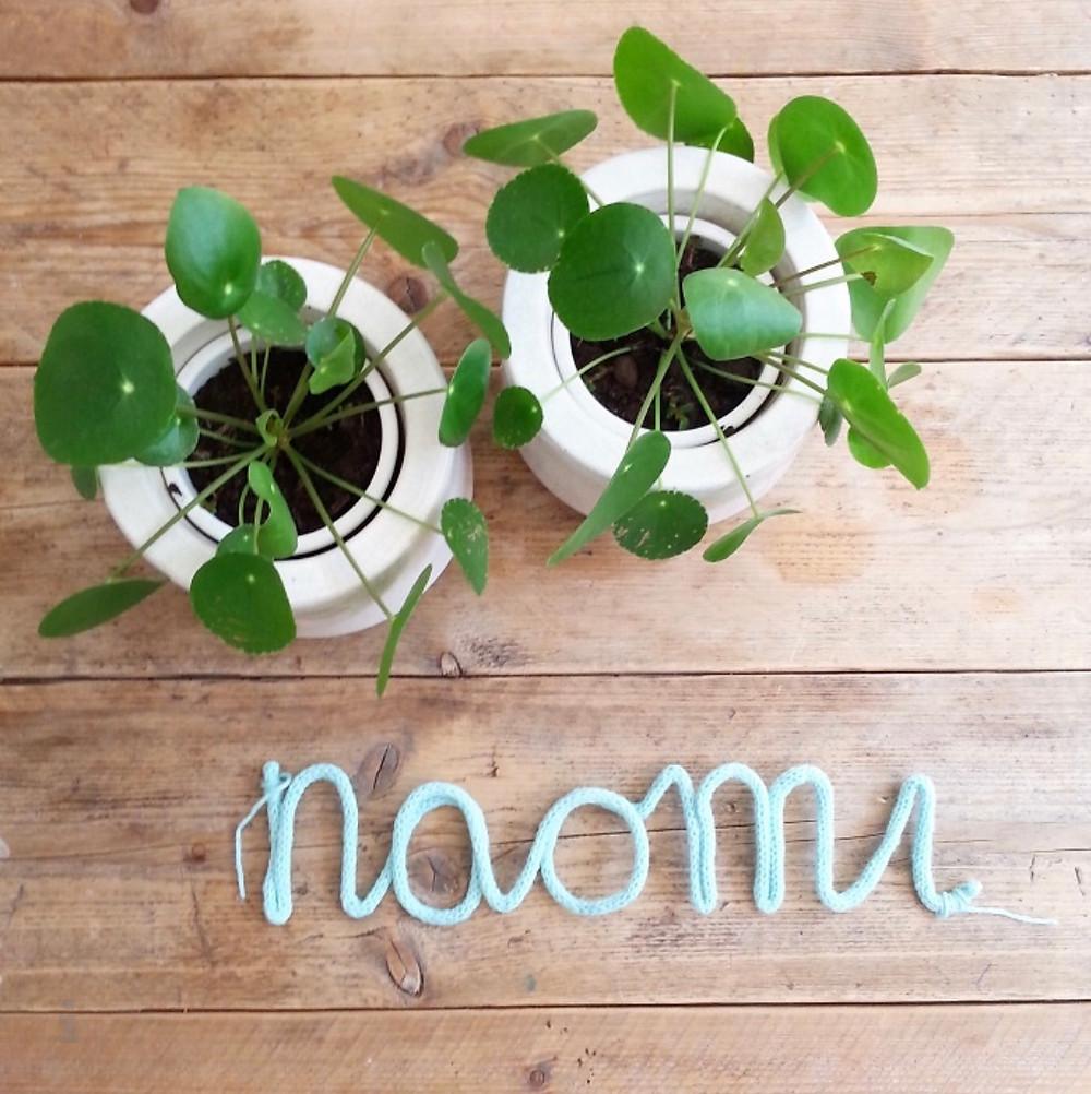 Hey. I'm Silvie | Lifestyle Blog. DIY kraamgeschenk