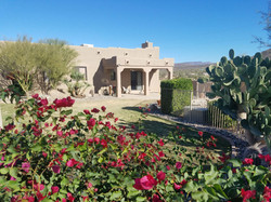 Desert Saige Exterior