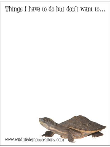 Reptile Notepads