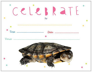 cann's turtle, turtle birthday party invitation, reptile themed birthday party, reptile themed birthday party invitation, Nature for You