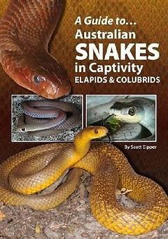 australian-snakes-in-captivity.jpg
