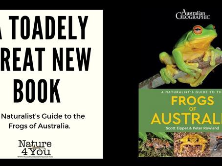 A Naturalist's Guide to Australian Frogs...... coming soon!