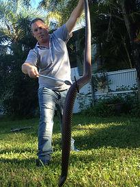 Snake training, Nature 4 You, snake management
