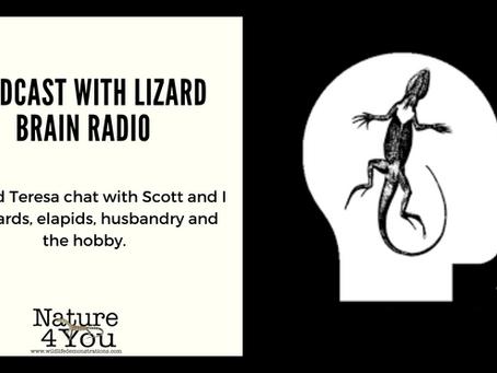 Podcast done with Lizard Brain Radio