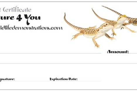 Gift Certificate for reptile lovers