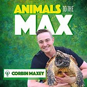 animals to the max podcast.jpg