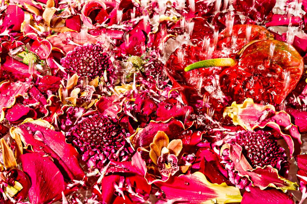 flower_078.jpg