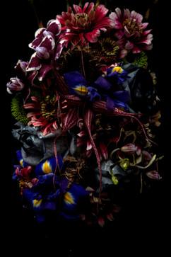flower_242.jpg