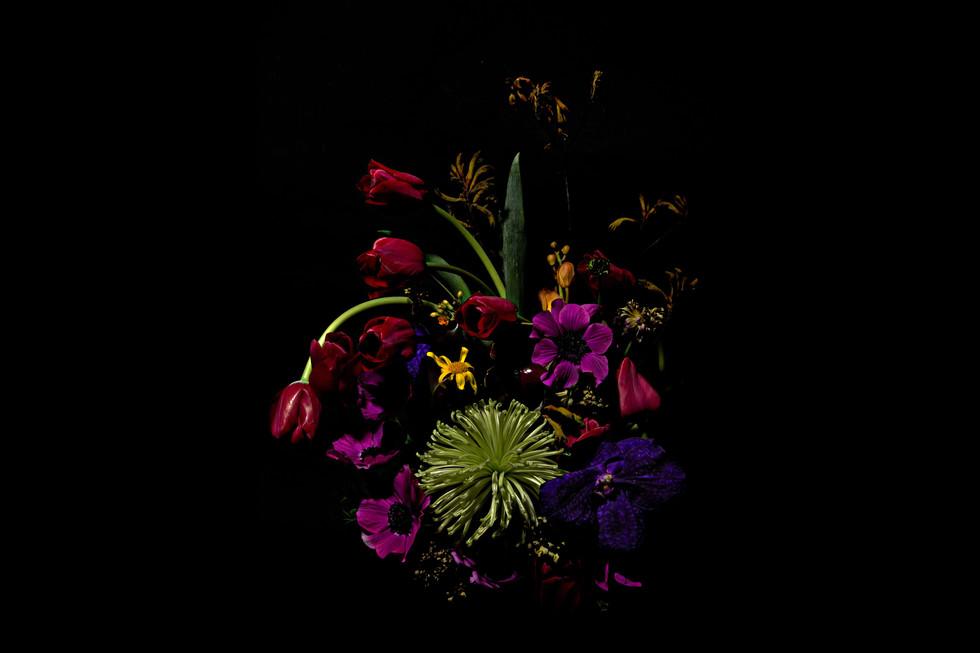 flower_228a.jpg