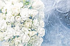 flower_210.jpg