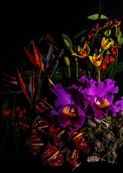 flower_229.jpg