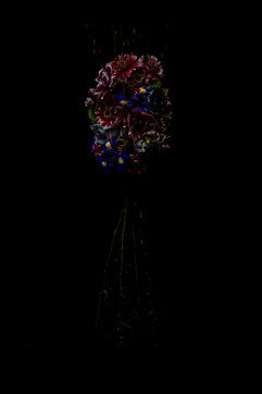 flower_241.jpg