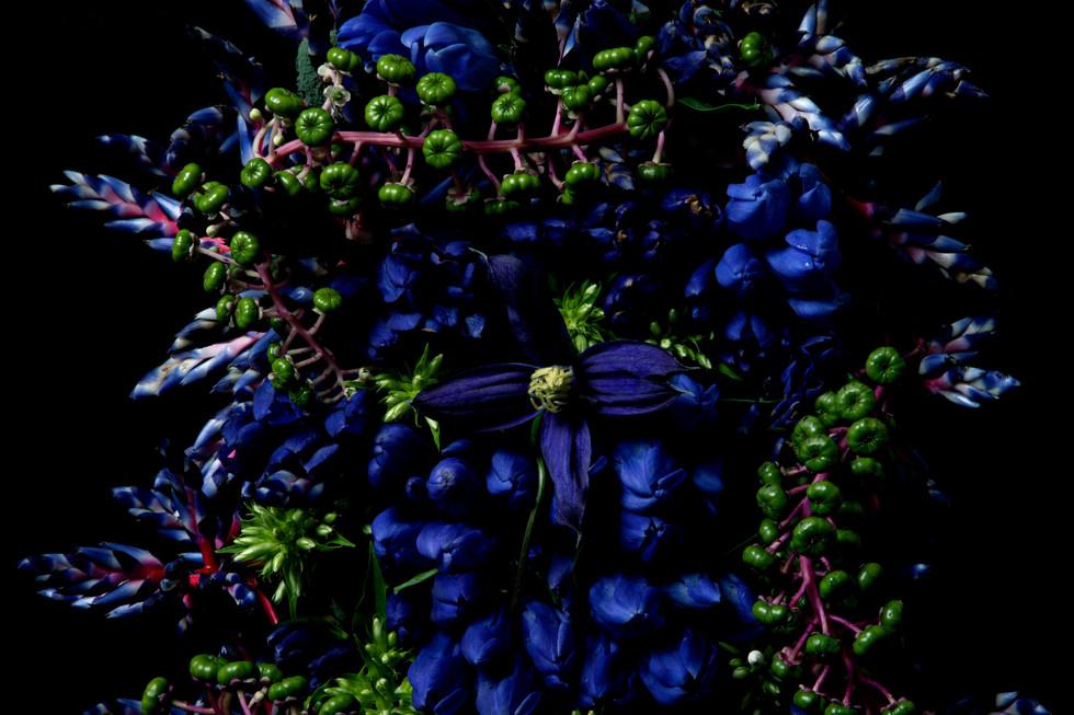 flower_264.jpg