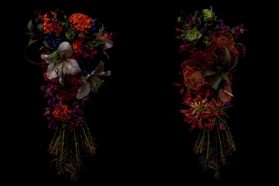 flower_233a.jpg