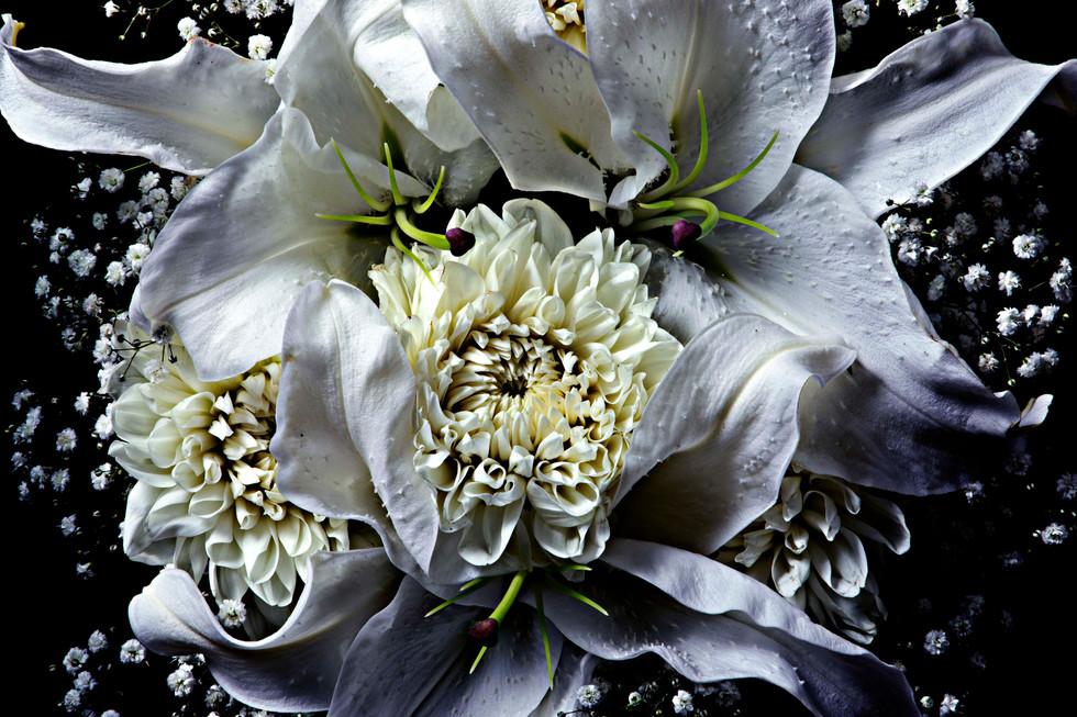 flower_262.jpg