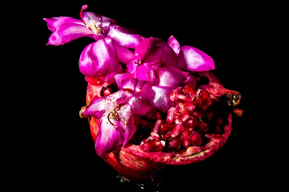 flower_122.jpg