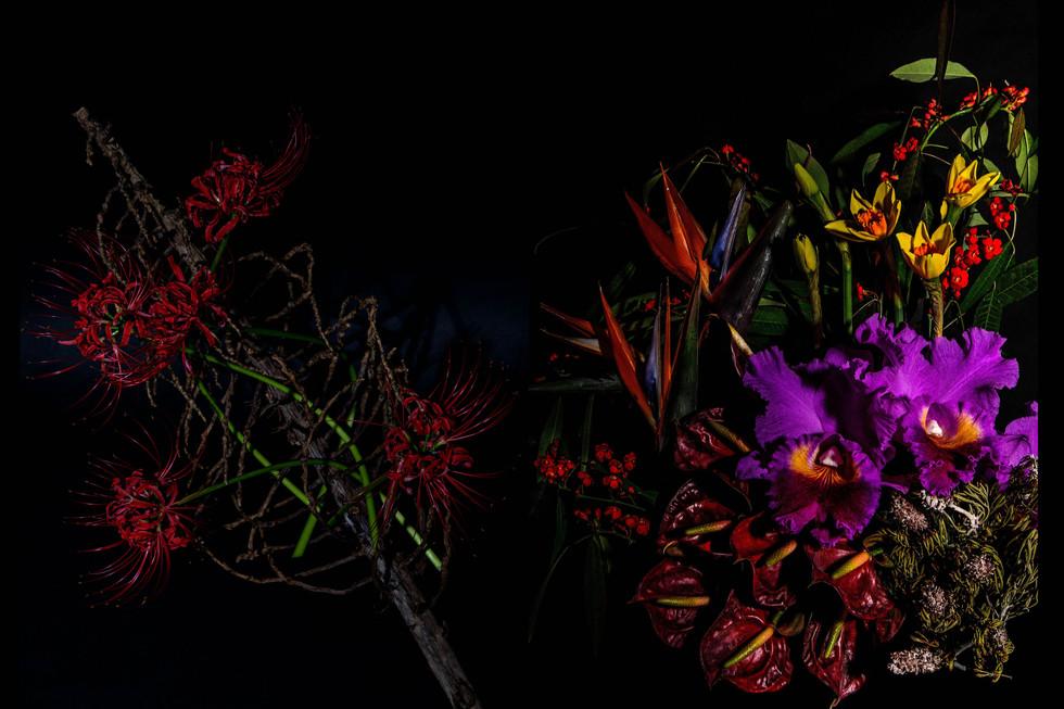 flower_229a.jpg