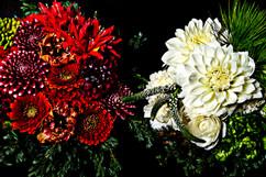flower_203.jpg