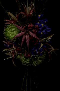 flower_238.jpg