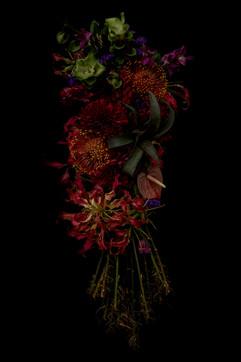 flower_233.jpg