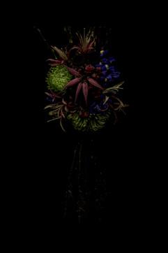 flower_237.jpg