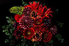 flower_204.jpg