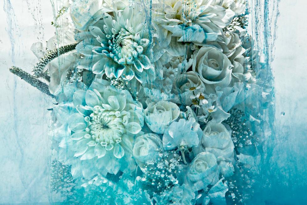 flower_206.jpg