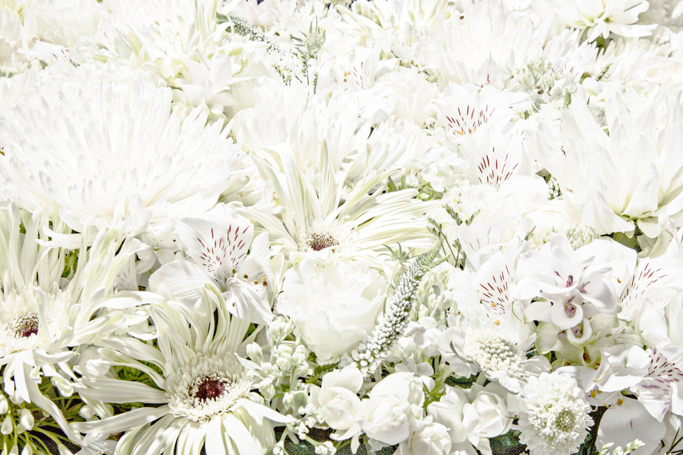 flower_200r.jpg