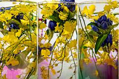 flower_256.jpg