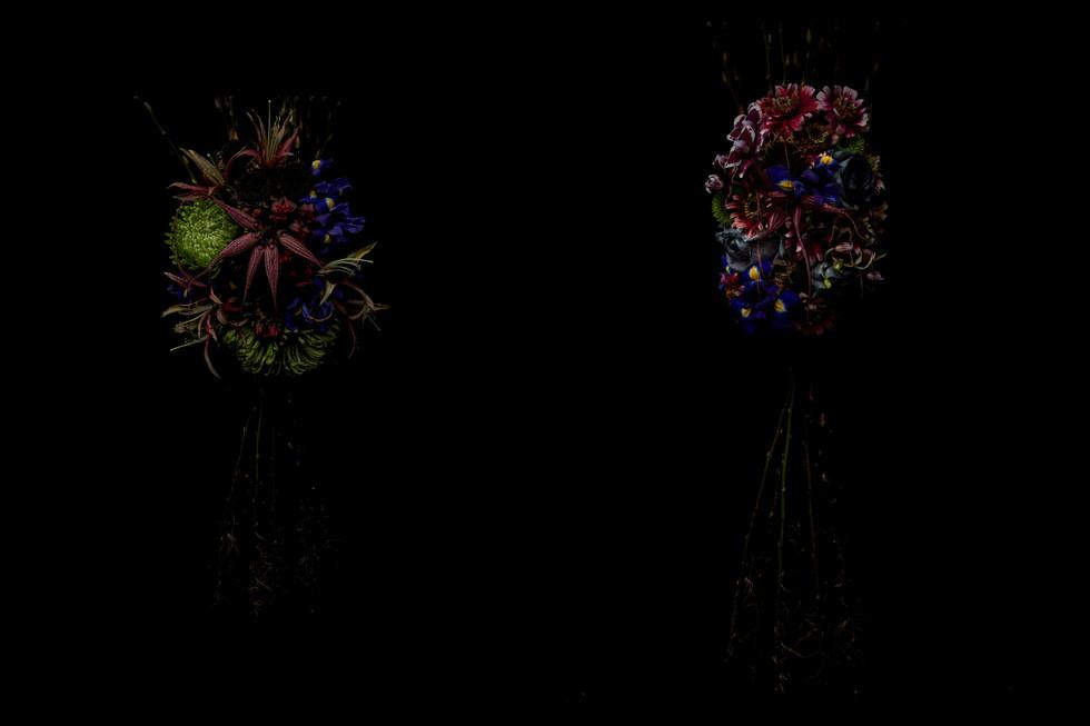 flower_241a.jpg