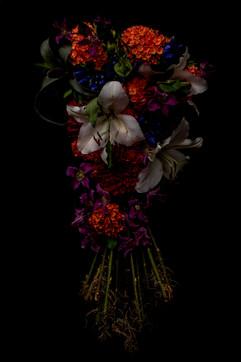 flower_230.jpg