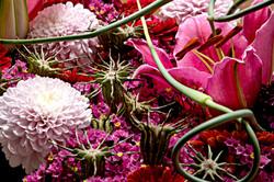 flower_249