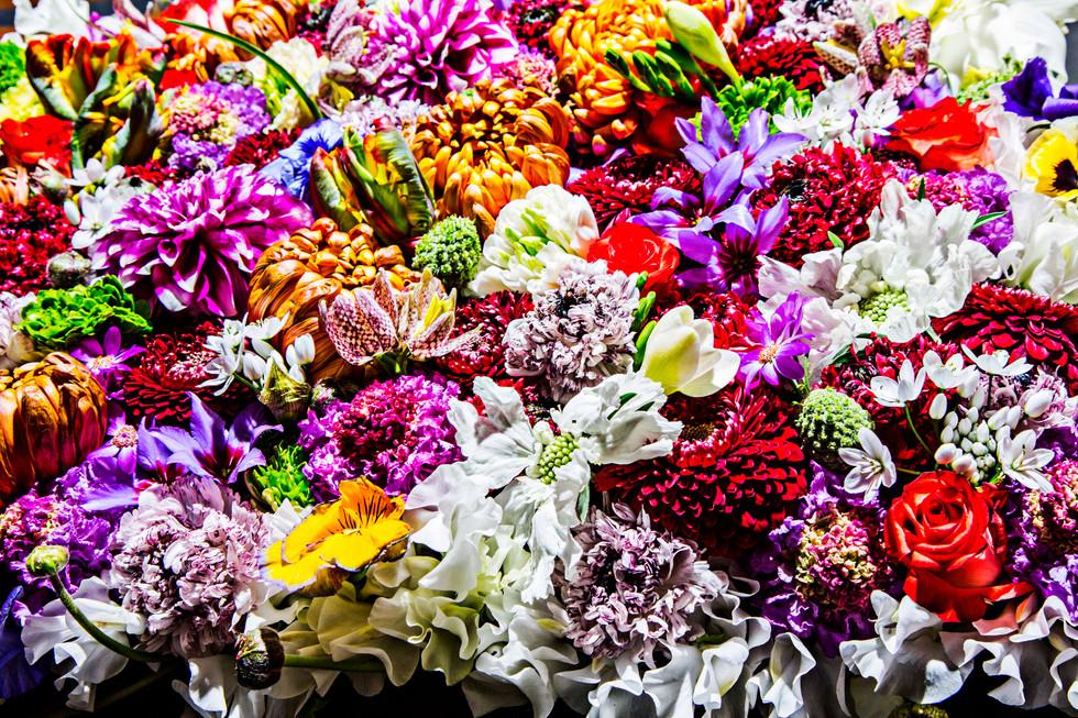 flower_141.jpg