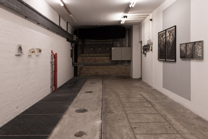 Dialogue Exhibition with Nicolai Howalt