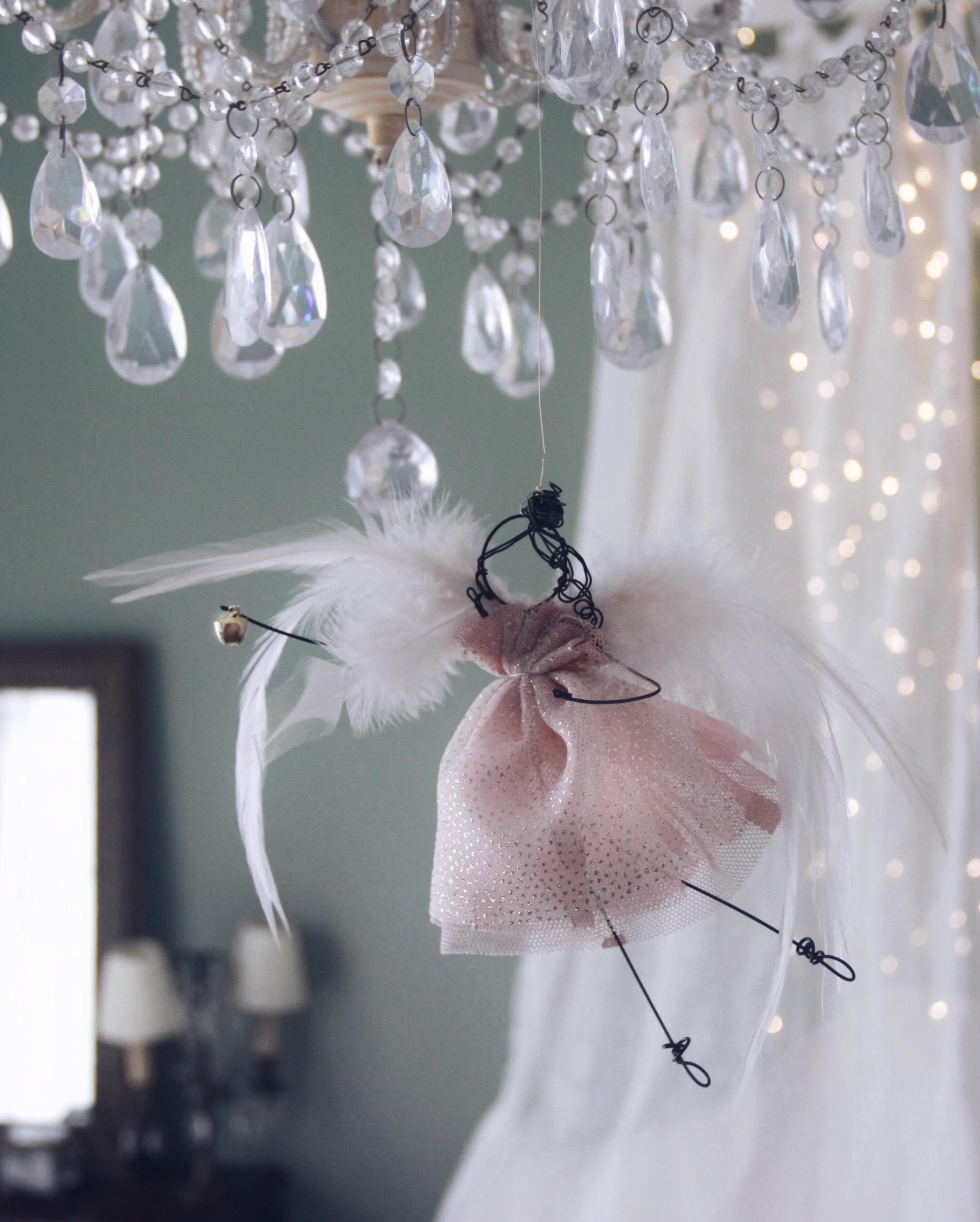 angelo piume rosa 2