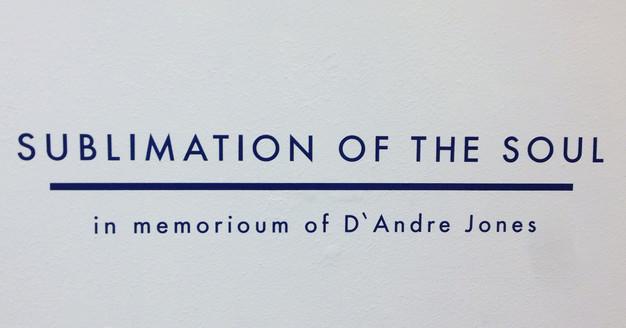 Sublimation of the Soul  |  D'Andre Jones