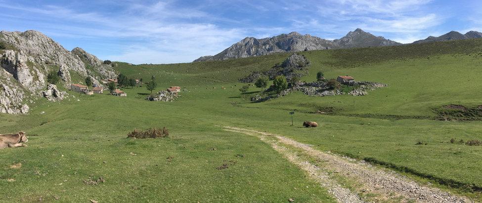Domingo 23 > Ruta del Quesu Gamoneu