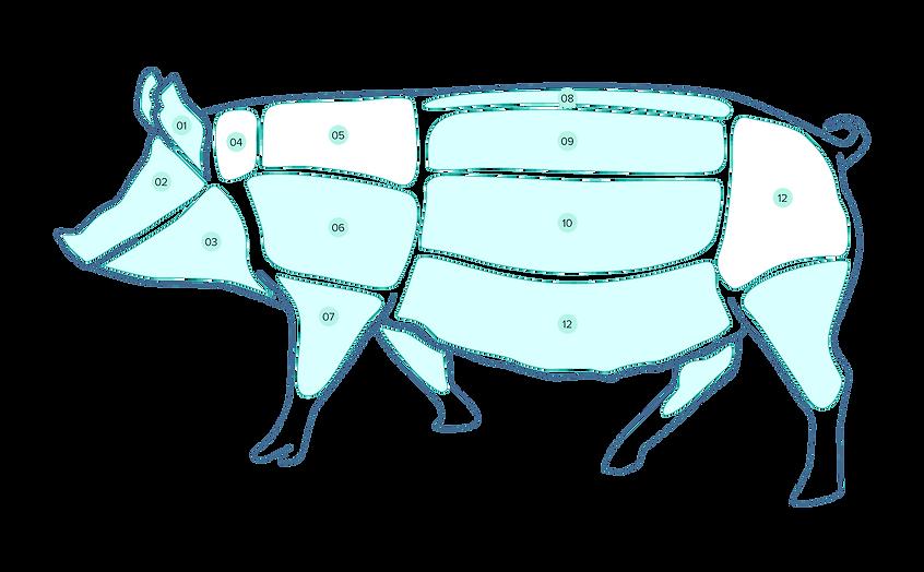 pork-diag1-compressor.png