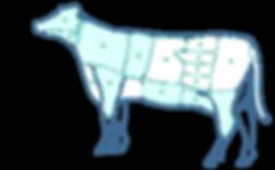 beef-diag1-compressor.png