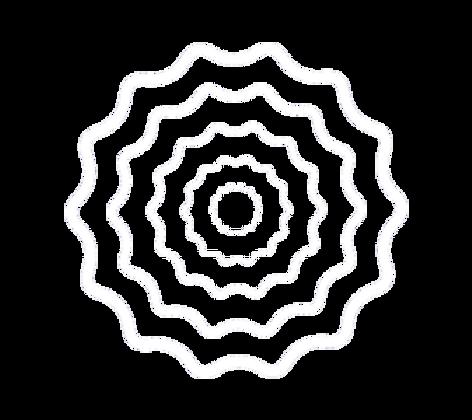 curves-bg-white.png