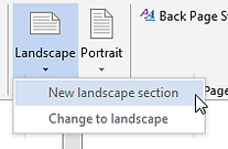 New landscape section button