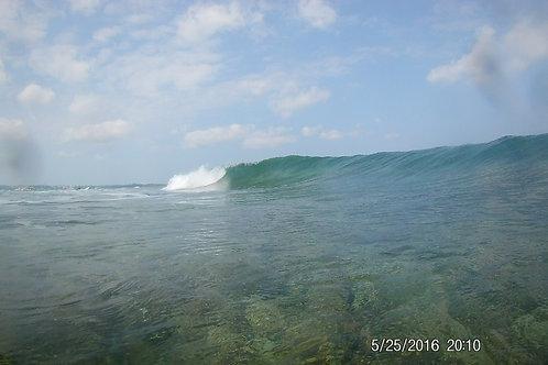 SURF CAMP ( + lessons + transportation + equipment + surf insurance