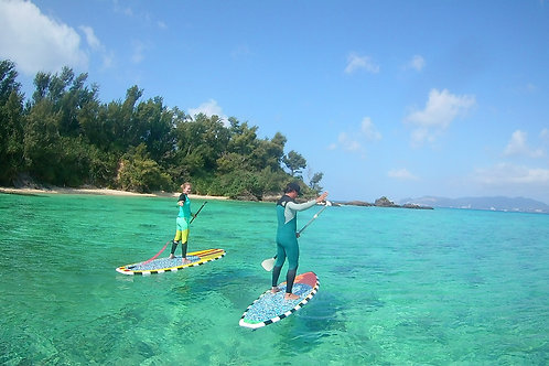 STAND UP PADDLE BOARD SURF CAMP +lessons+transportation+insurance