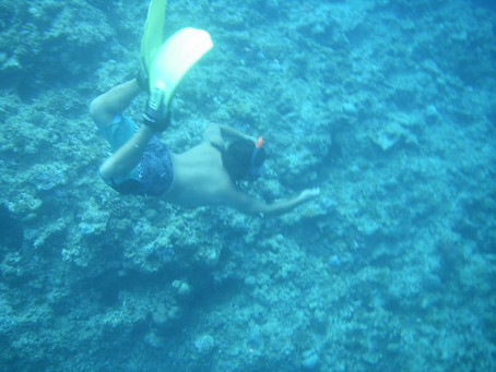 great snorkeling adventure whit tropical surf house watersport tour and school in okinawa japan
