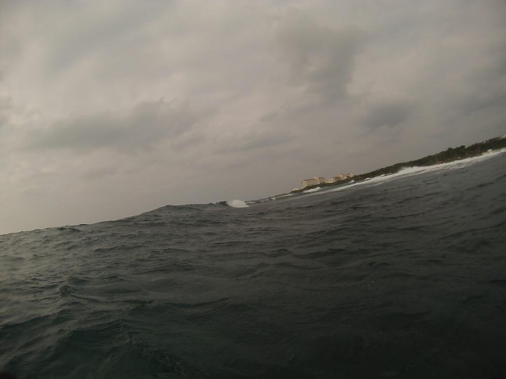 http://www.tropicalsurfhouse.com/