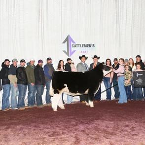 Ruby Bell  Cattlemen's Congress  4th Overall Market Steer