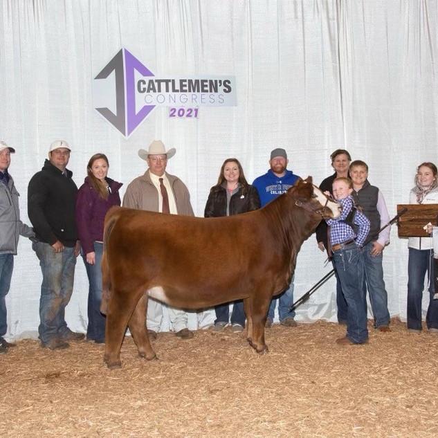 Karter Peoples Cattlemen's Congress Champion Simbrah Heifer