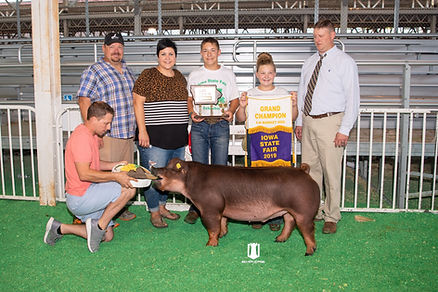 Sage Voegle - Iowa State Fair - Grand Ch